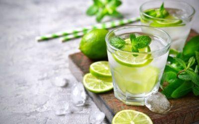 Gin Tonic Menta